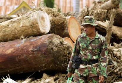 An Indonesian soldier looks on after the Bukit Lawang flood of Ramadhan 1424. Logs from the National Park picture in the background washed down by the flood which destroyed the township.