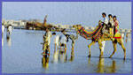 Clifton Beach, Karachi, Pakistan. Published on 18 Zhul Qa'dah 1424.Supplied by Syed Atiq ul Hassan