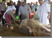 Residents of Bukit Lawang commence burial procedures.