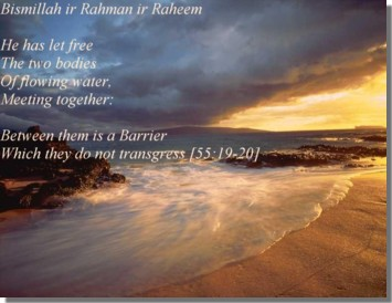 """He has made the two seas to flow freely (so that) they meet together: Between them is a barrier which they cannot pass"""